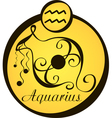 stylized zodiac signs in a yellow circle aquarius vector image vector image