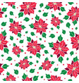 red green poinsettia flower and holly vector image