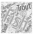 SF trout fishing tips Word Cloud Concept vector image