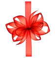 red transparent bow and ribbon top view vector image