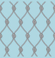 marine rope fishnet with knots seamless vector image
