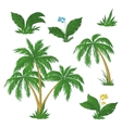 palm trees flowers and grass vector image vector image