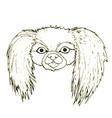 black white dog head of a pekingese isolated on vector image