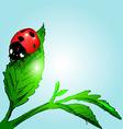Colored hand sketch ladybug vector image