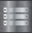 metal plate with screw head on brushed steel vector image
