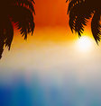 Sunset background with palm trees vector image