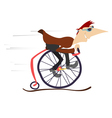 Cartoon man rides a comic bike vector image
