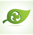 Recycle icon at leaf vector image