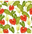 Seamless pattern with flowers spathiphyllum and vector image vector image