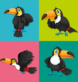 Toucan in four frames vector image