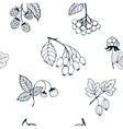 Berries sketch seamless pattern vector image