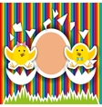 cute little chicken birthday greeting card vector image