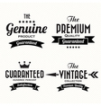 Retro vintage badges and labels vector image
