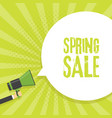 spring sale announcement megaphone in retro vector image