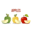 Three apples with slices isolated over white vector image