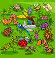 cartoon insects animal characters group vector image vector image