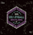 Volleyball team hexagonal badge vector image