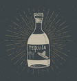 vintage label hand drawn bottle of tequila vector image