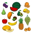 Assortment of ripe and sweet fruits sketches vector image