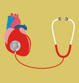 heart with stethoscope test check internal vector image