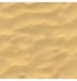 Beach sand background Mesh vector image vector image