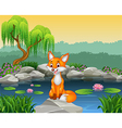 Cute fox sitting on the rock vector image