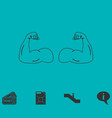 gym icon flat vector image