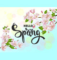 hello spring background with cherry blossoms vector image