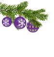 New Year or Christmas background Firtree branch vector image