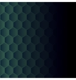 Hexagonal mosaic vector image