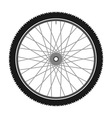 Isolated Bicycle Wheel vector image vector image