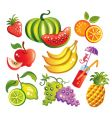 Set of fruit vector image