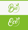 eco and bio hand written lettering logo vector image
