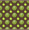 cartoon fresh watermelon fruits in flat style vector image