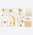 Set of gold elements for design vector image