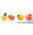 set of fruit juice splash pineapple strawberry vector image