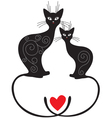 Pair cats vector image