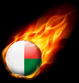 Round glossy icon of madagascar vector image