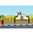 Animals sitting at the bench vector image