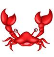 crab cartoon for you design vector image
