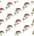 berry branch pattern vector image