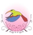 a vivid of a flying hummingbird vector image