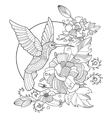 Hummingbird coloring book for adults vector image