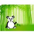Bamboo and panda vector image