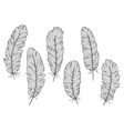 Isolated gray quill feathers set vector image