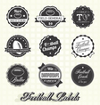 Football Champion Labels And Icons vector image vector image