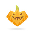 Pumpkin isolated on a white backgrounds vector image