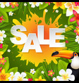 sale banner with frangipani vector image vector image