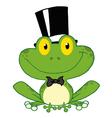 Frog Groom vector image