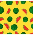Fruits watermelon seamless patterns vector image